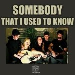 Somebody That I Used to Know by Walk off the Earth.